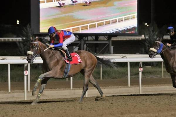 Δέκα νικητές στο ΣΚΟΡ 6 των ελληνικών ιπποδρομιών